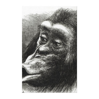 Chimpanzé déçu et boudeur toiles