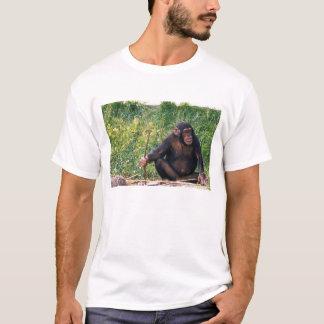 Chimpanzé utilisant le bâton comme outil à obtenir t-shirt