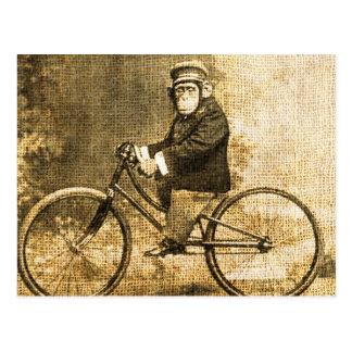 Chimpanzé vintage sur une bicyclette carte postale