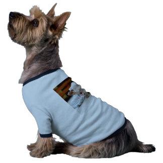 Chiot anglais de bouledogue de salut mignon t-shirt ringer pour chien