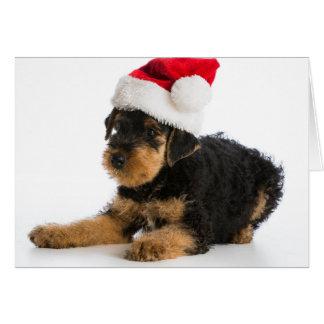 Chiot d'Airedale Terrier utilisant le casquette de Carte De Vœux