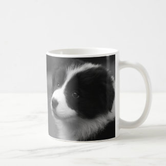 Chiot de border collie mug