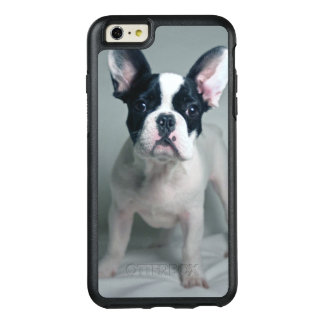 Chiot de bouledogue français à l'attention coque OtterBox iPhone 6 et 6s plus