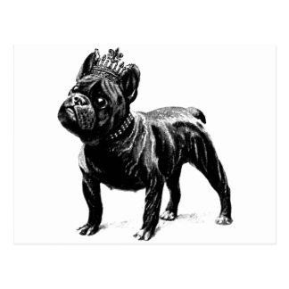 Chiot de chien de couronne de bouledogue français cartes postales