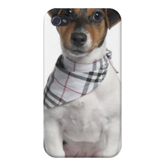 Chiot de Jack Russell Terrier (4 mois) Étui iPhone 4