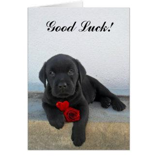 Chiot de Labrador de bonne chance Cartes