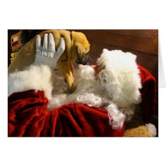 Chiot de mastiff avec la carte de Noël de Père
