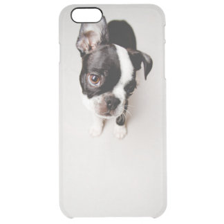 Chiot d'Edison Boston Terrier Coque iPhone 6 Plus