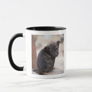 Chiot désespéré mug