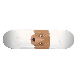 Chiot effronté mignon skateboard