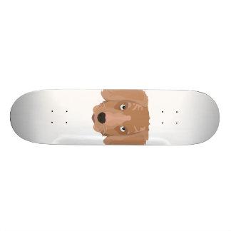 Chiot effronté mignon skateboards customisés