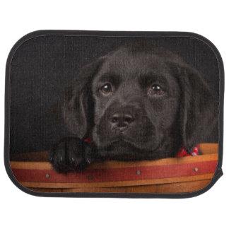 Chiot noir de labrador retriever dans un panier tapis de voiture