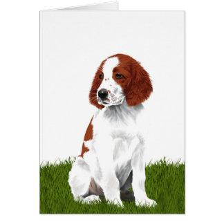 Chiot rouge et blanc irlandais de poseur carte de vœux