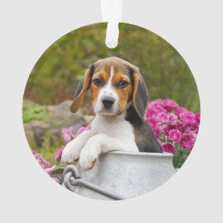 Chiot tricolore mignon de chien de beagle dans un