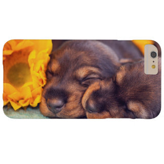 Chiots adorables de sommeil Doxen Coque iPhone 6 Plus Barely There