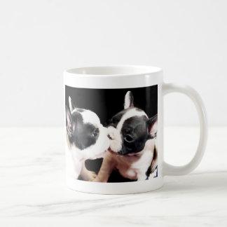 Chiots de bouledogue français mug