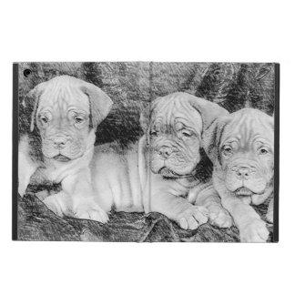 Chiots de Dogue de Bordeaux