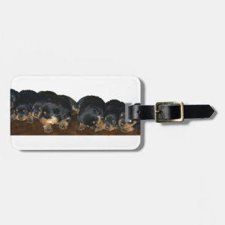 Chiots de rottweiler étiquettes bagages