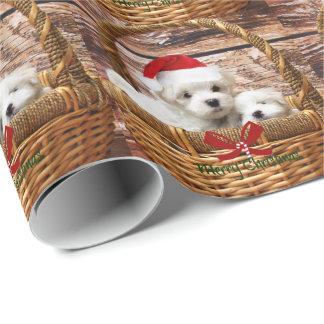 Chiots maltais dans un panier de Noël Papiers Cadeaux Noël