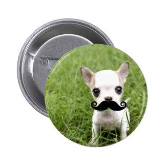 Chiwawa avec la moustache drôle dans le jardin badge