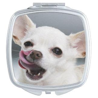 Chiwawa blanc léchant des lèvres miroirs de poche