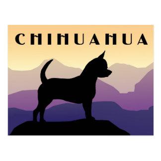 Chiwawa de montagnes pourpres carte postale
