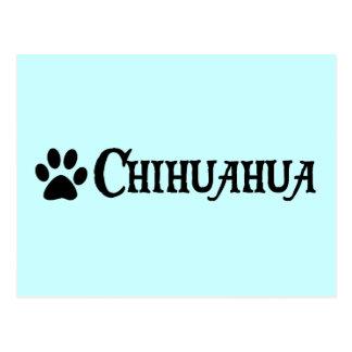 Chiwawa (style de pirate avec le pawprint) carte postale
