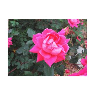 Choisissez l'affiche rose de toile