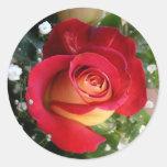 Choisissez l'autocollant rose