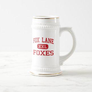 Chope À Bière Ruelle de Fox - renards - lycée - Bedford New York