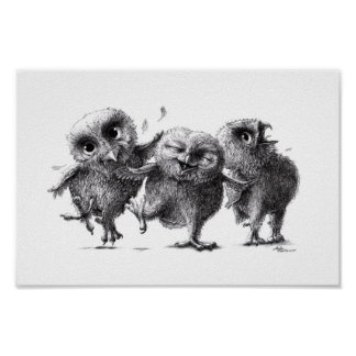 Chouettes folles - Crazy Owls Posters