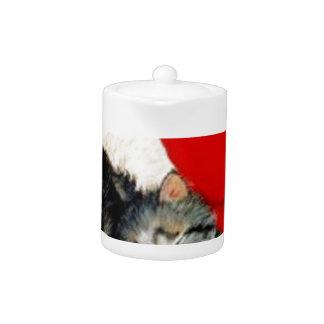 christmas_cat_dog_hat