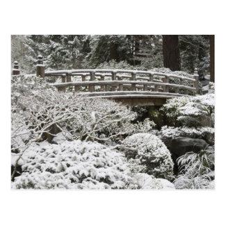 Chutes de neige dans le jardin japonais de carte postale