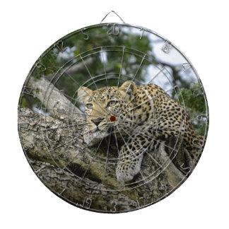 Cibles De Fléchettes Chat sauvage animal de safari de l'Afrique d'arbre