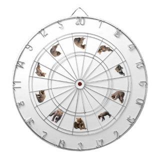 Cibles De Fléchettes Cible de cage en métal avec les petits animaux