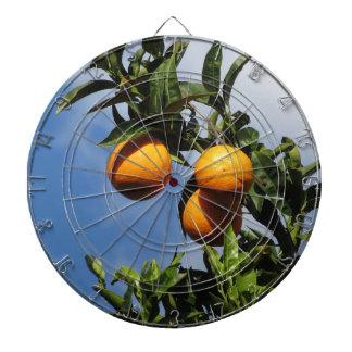 Cibles De Fléchettes Fruits oranges accrochant sur l'arbre contre le