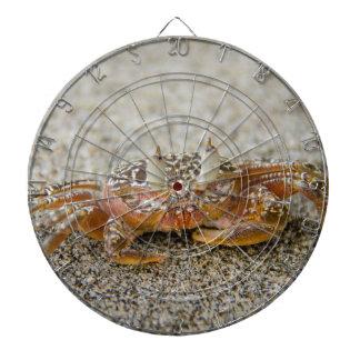 Cibles De Fléchettes Griffes de crabe