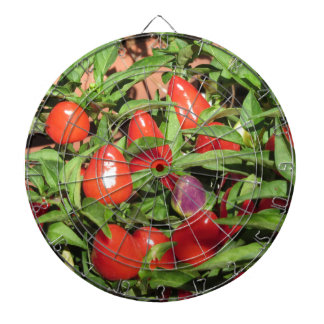 Cibles De Fléchettes Poivrons de piment rouge accrochant sur le plante
