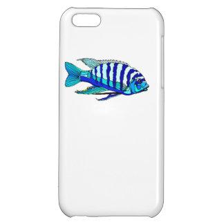 Cichlid rayé bleu coque iPhone 5C