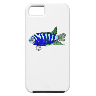 Cichlid rayé bleu étui iPhone 5