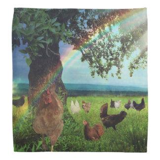 Ciel de poulet bandana