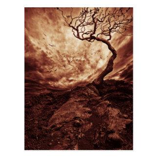 Ciel dramatique au-dessus de vieil arbre isolé carte postale