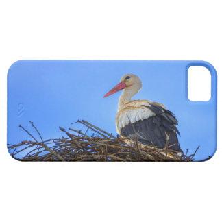 Cigogne blanche européenne, ciconia, dans le nid coque iPhone 5