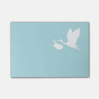 Cigogne bleue et blanche de vol