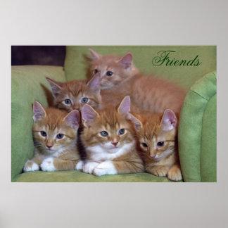 Cinq chatons oranges sur la chaise poster