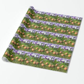 Cinq oeufs lâches se trouvant près des crocus de papier cadeau noël