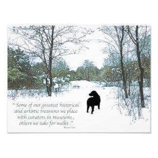 Citation noire de Labrador - trésors Photographies