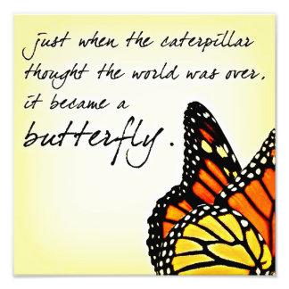 Citations inspirées de lutte de la vie de papillon photos d'art