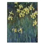Claude Monet - iris jaunes Cartes Postales