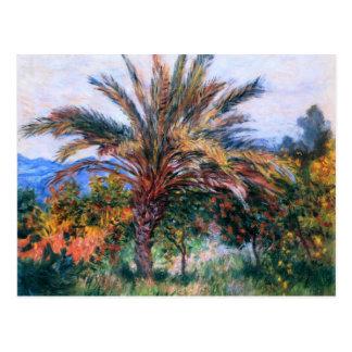 Claude Monet : Palmier chez Bordighera Carte Postale